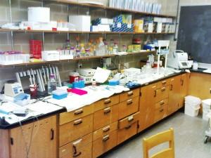 Das kleine Labor, hier wird Biochemie mit RNA gemacht!