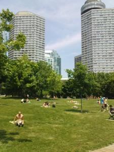 Kontrastreiches Bild. Park an der Harbourside.