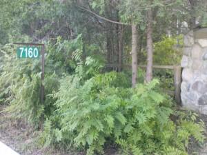 Wer möchte nicht Hausnummer 7160 wohnen?
